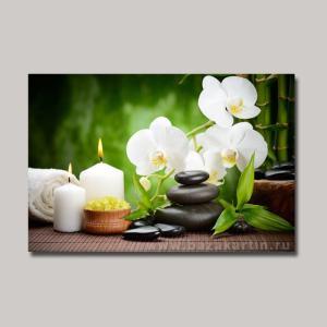 orhideya-akzia-3